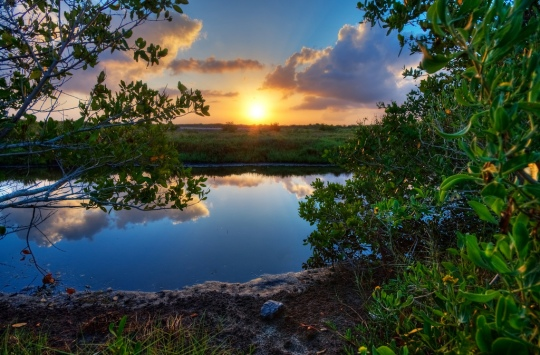 Indian River Lagoon by Gunner VV
