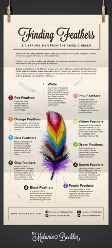ASK-ANGELS_Finding-Feathers-Infographic