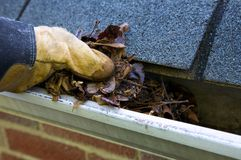 fall-cleanup-leaves-gutter-5299951