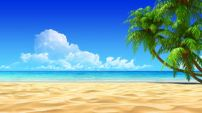palms-empty-idyllic-tropical-sand-beach-20104794